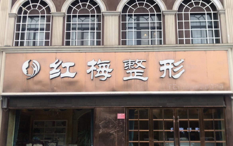 江苏省连云港市灌云县红梅整形